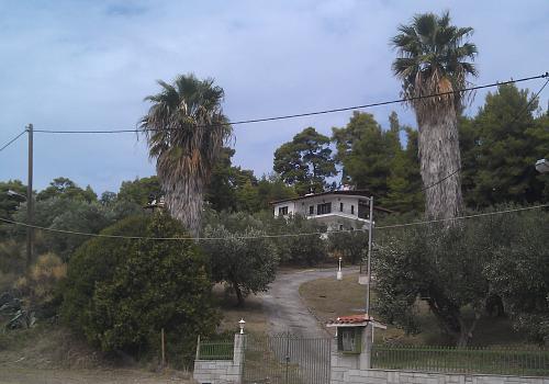 Нажмите на изображение для увеличения Название: Дача в Греции.jpg Просмотров: 11 Размер:94.2 Кб ID:626